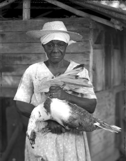 woman and chicken